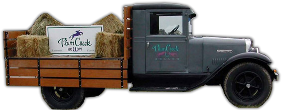 Plum Creek Hollow Old Van